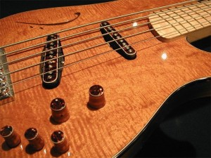 Custom 5-String Bass Guitar with Stainless Steel Frets